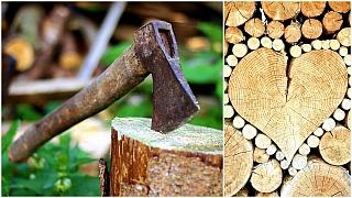 Palivové dřevo: Myslete včas na dřevo do kamen