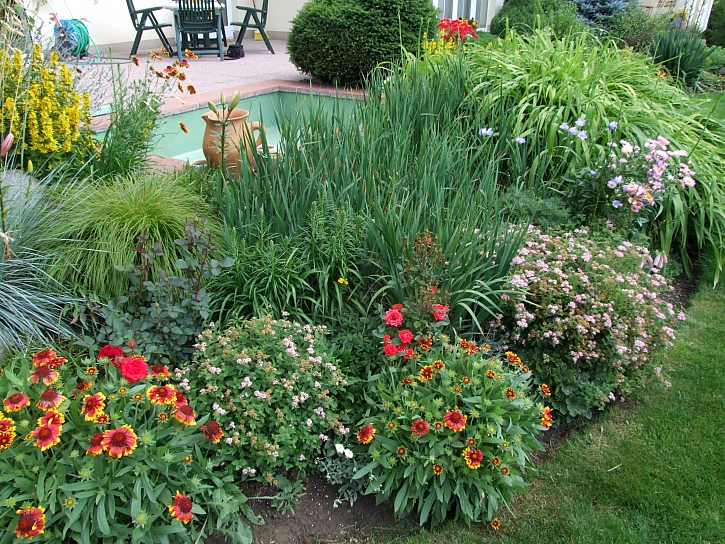 Medonosné rostliny, které jsou užitečné i krásné (Zdroj: Ludmila Dušková)
