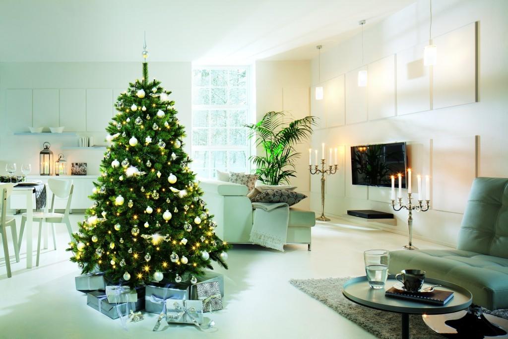 BAUHAUS rádce - vánoční stromky