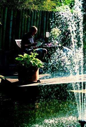 Zahradní jezírka nebo rybníčky