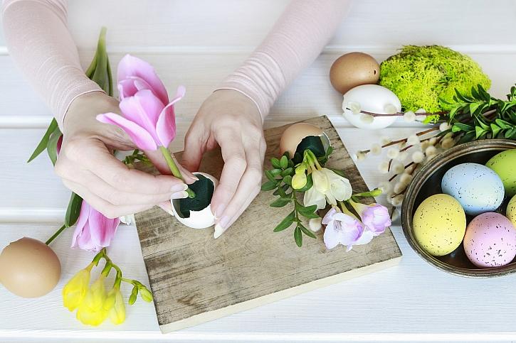 Zapíchnutí tulipánu