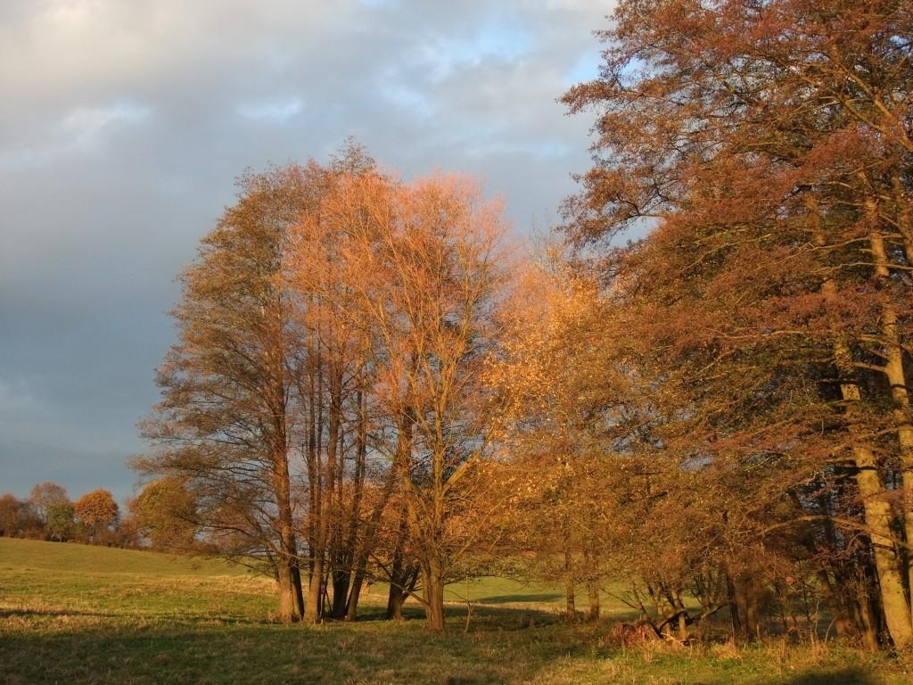 Krása barevného podzimu