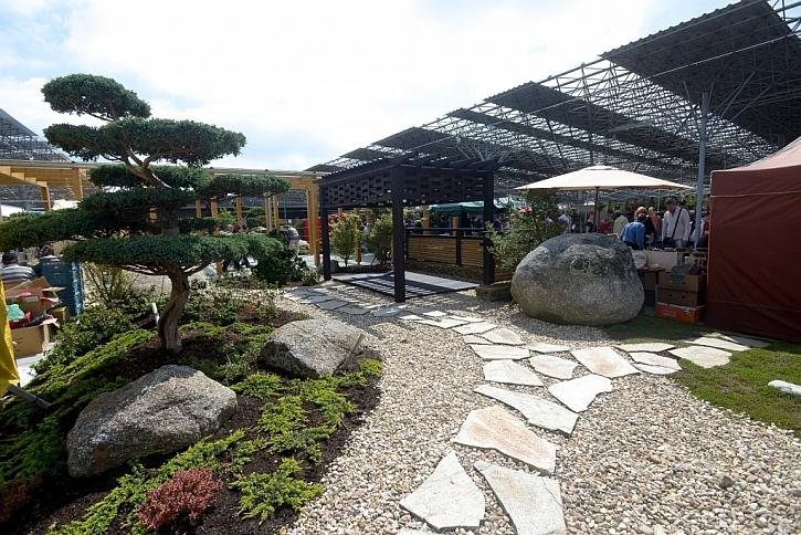 Takto může vypadat Japonská zahrada i u vás. Vše záleží na trpělivosti a dobrém plánování.