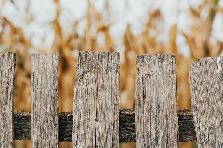 Dřevěný laťkový plot