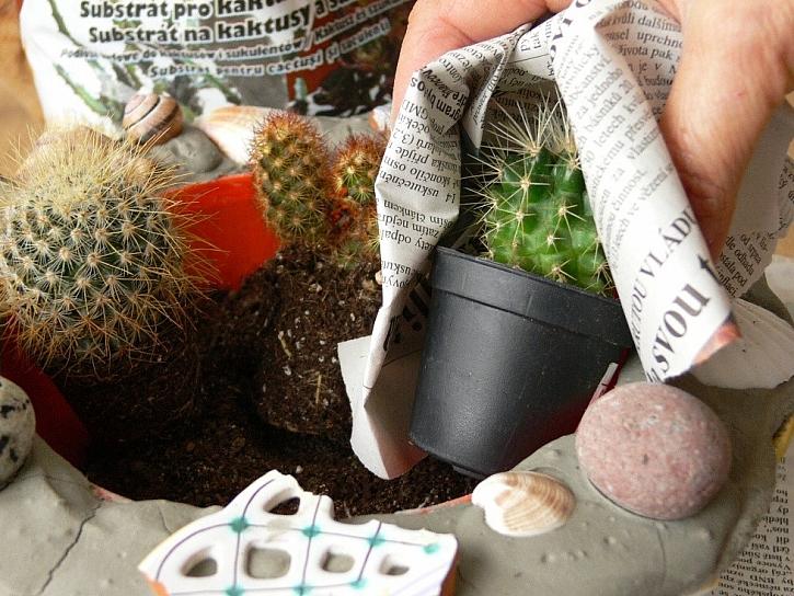 Postup na betonový květináč na kaktusy