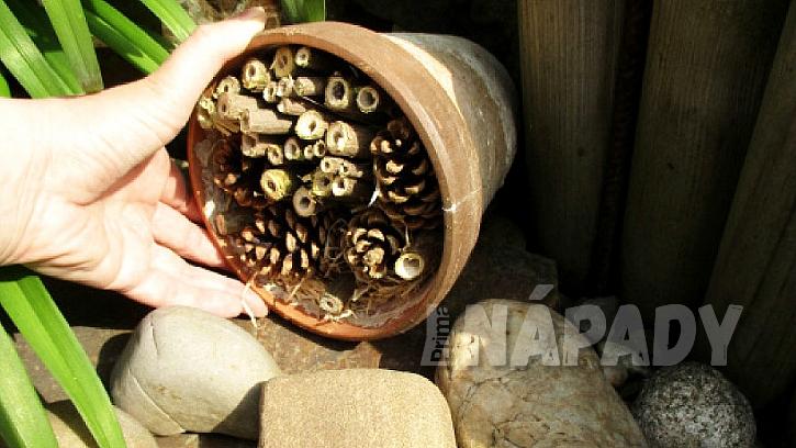 Jak usnadnit život pracovitým opylovačům a sběračům: Postavte jednoduchý domeček pro užitečný hmyz 6