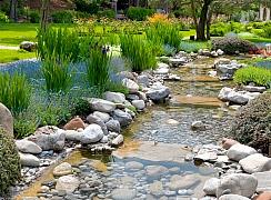 Úprava vody v bazénu a zahradním jezírku na jaře