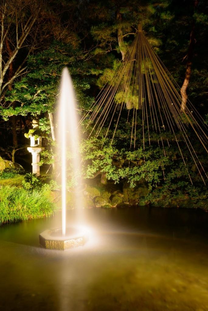 Jezírko s fontánkou v noci za umělého osvětlení působí luxusně