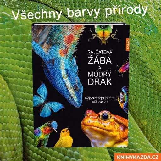 Andrea Köhrsenová – Rajčatová žába a modrý drak (Zdroj: Nakladatelství Kazda)