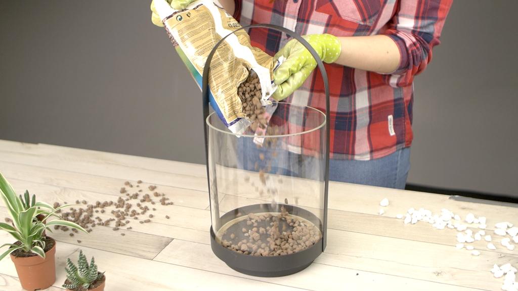 Jak vytvořit mini skalku do bytu: Zahrada ve skle