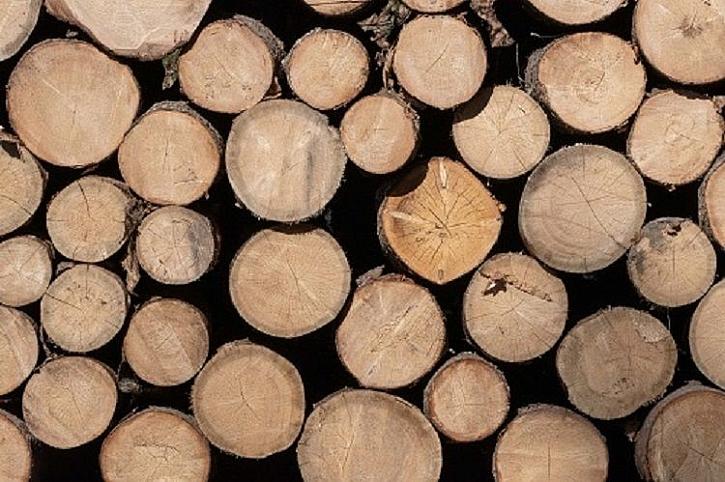 Přípravu dřeva na zimu není dobré podceňovat