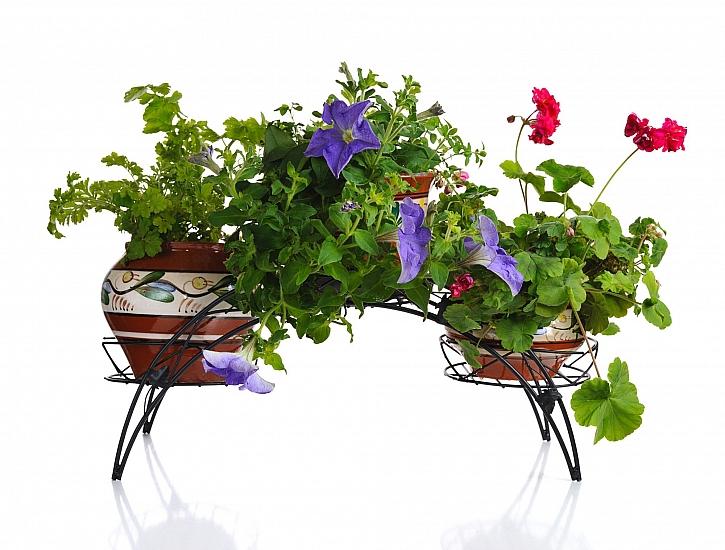 Květinové stojany tradiční i nadčasové (Zdroj: Depositphotos)