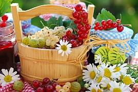 Co kvete a zraje v červenci na zahradě a co udělat, než odjedeme na dovolenou?