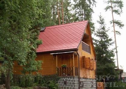 Nátěr střechy prodlouží její životnost (Zdroj: Austis)
