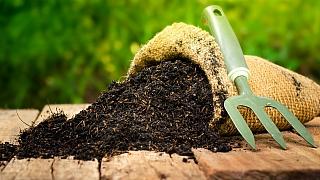 8 nejčastějších chyb při hnojení zahrady aneb Nepodceňujte výživu rostlin