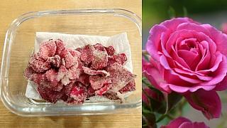 Kandované květiny: Netradiční lahůdka a jedlá dekorace