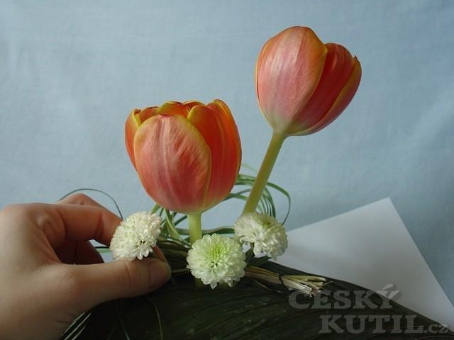 Jarní květina na stůl