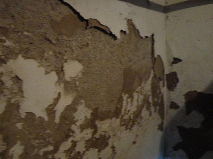 Omítka poškozená vlhkostí ve sklepě