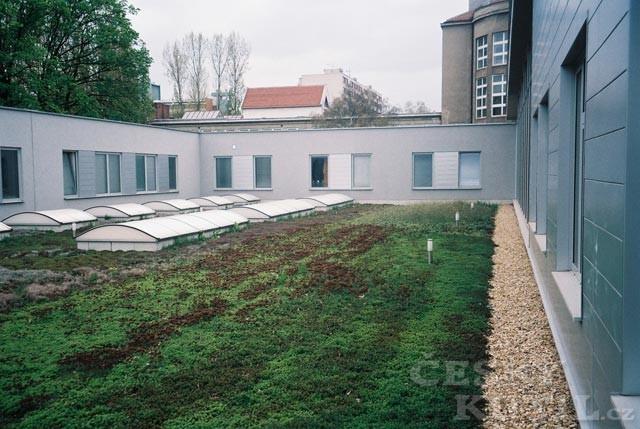 Střechy a střešní krytiny – 4. díl: Zelená střecha