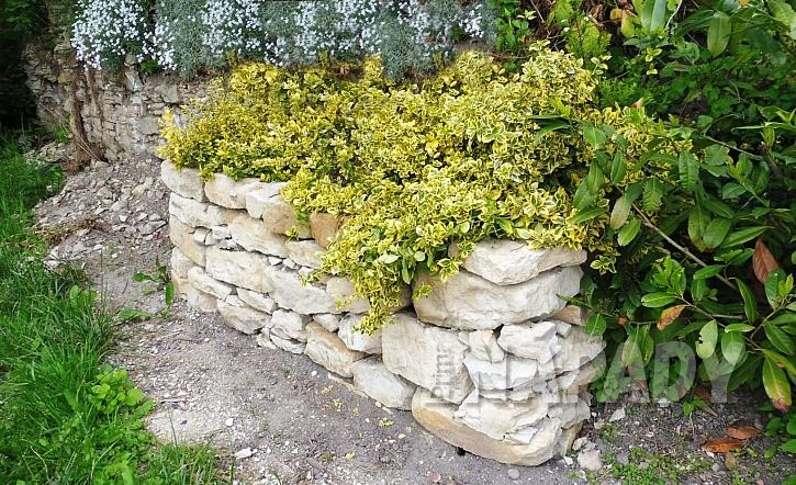 okrasná kamenná zídka