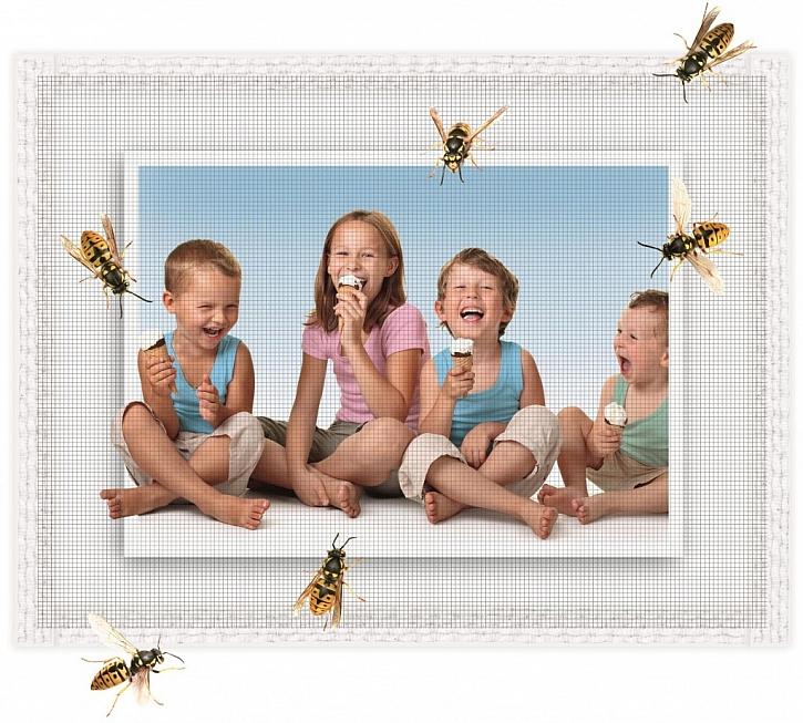 Ochrana před hmyzem