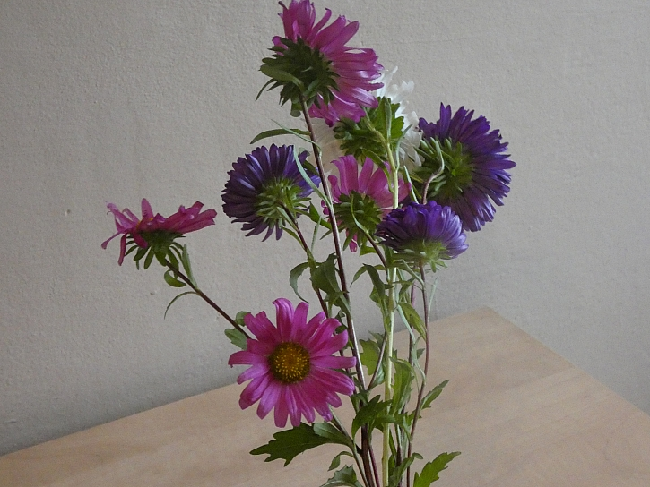Pokládání květin přes sebe