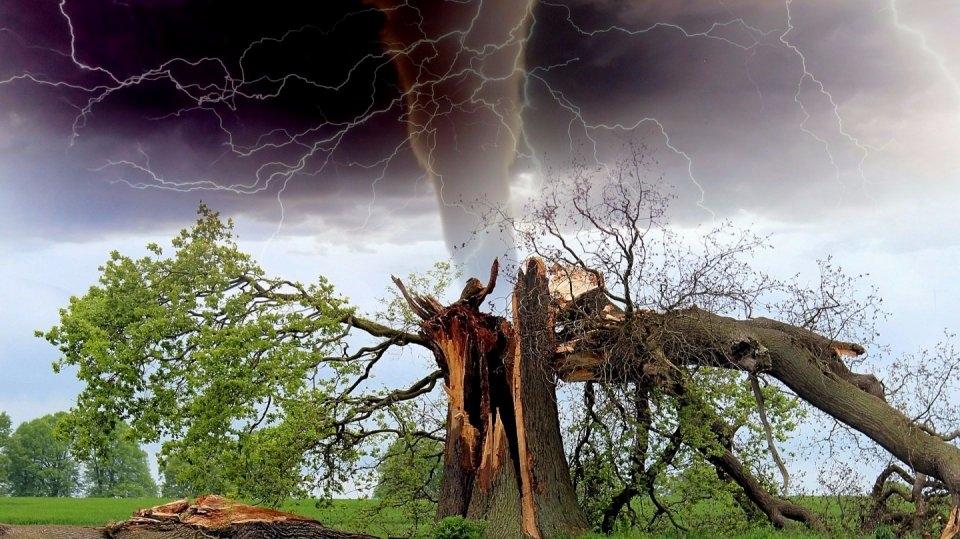 Bouřka: Jak se chovat, kam se ukrýt a co nedělat