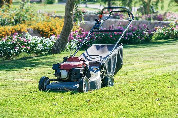 Pravidelně a správně sekaný trávník je ve vynikající kondici