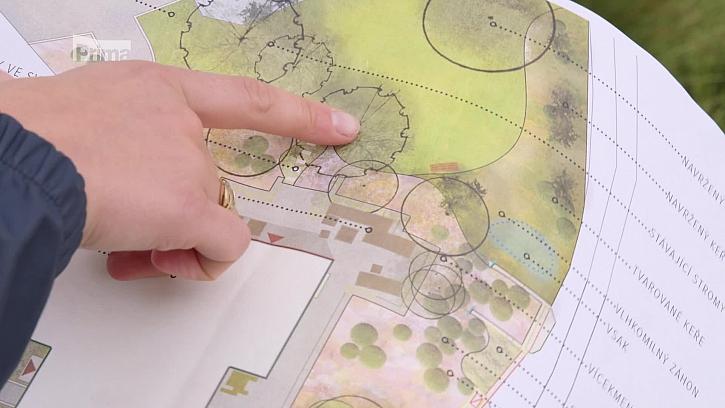 Jak si naplánovat a zařídit funkční zahradu, ve které to žije? (Zdroj: Život na zahradě aneb plánování zahrady)