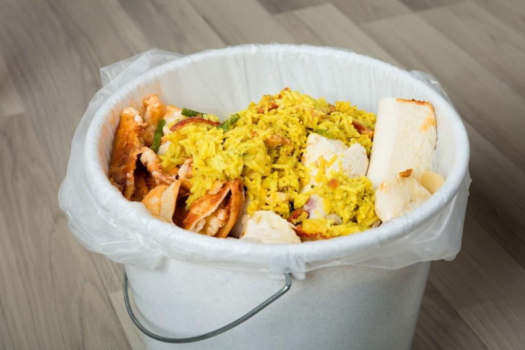 Kompostování v bytě není nic nehygienického