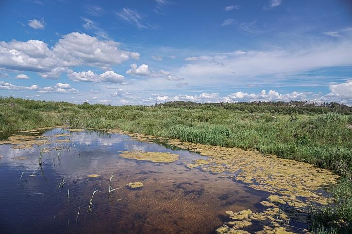 Rekultivace půdy vrací do přírody zničené člověkem život