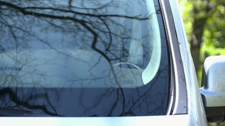 Jak šetrně odstranit zaschlý hmyz z auta
