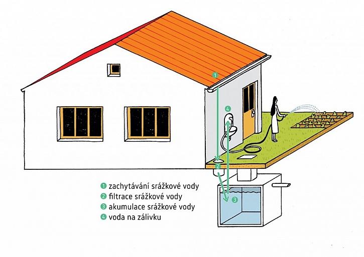 Využití dešťové vody k zalévání