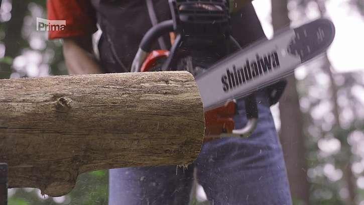 Řezání dřeva motorovou pilou.