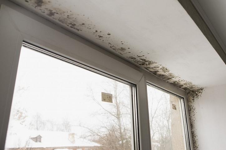 Častou příčinou vzniku plísně v okolí oken je nesprávně větrání