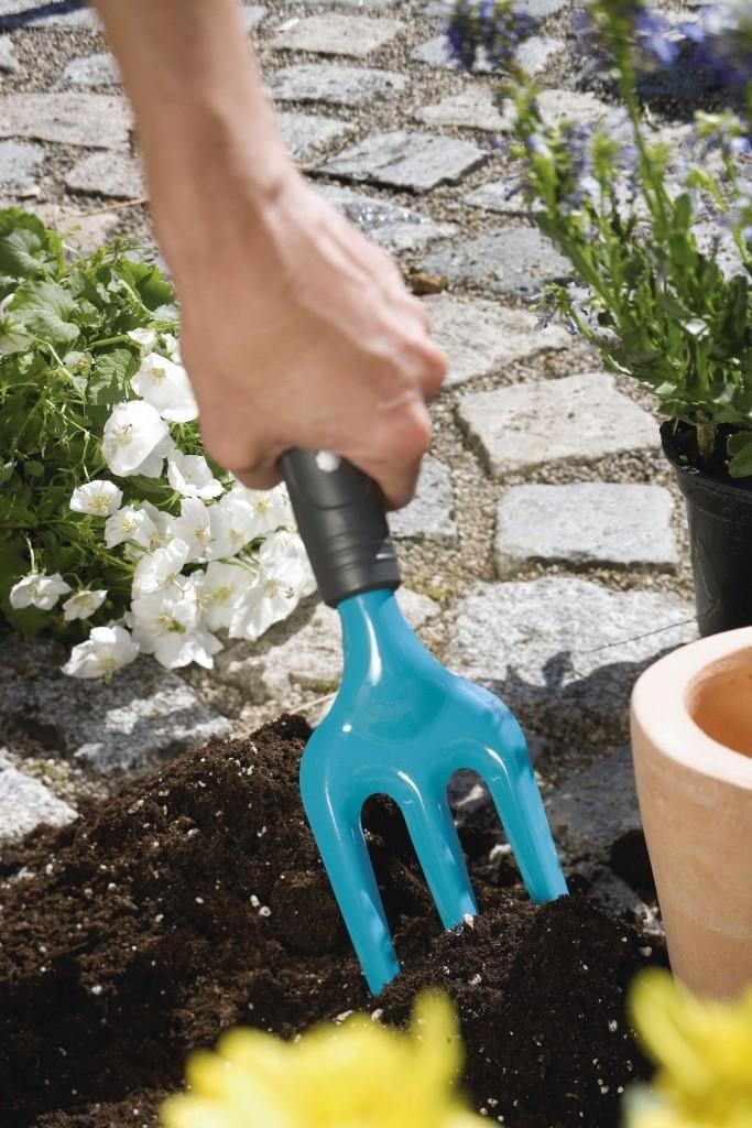 4. Zasejte si zeleninu a bylinky!