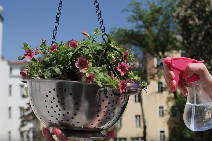 DIY závěsný květináč: cedník zavěste