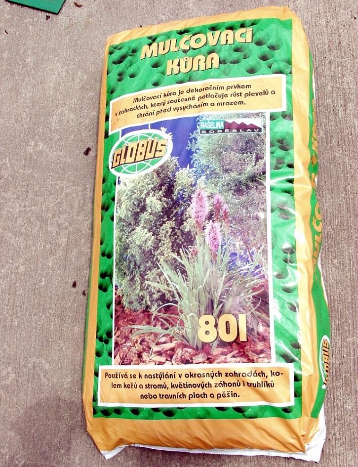 Jak pěstovat okrasné keře?