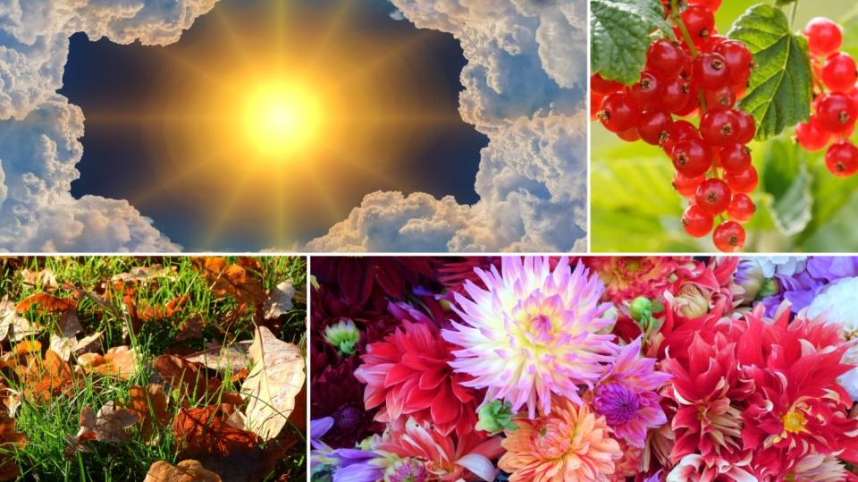 Předpověď počasí na víkend 13. a 14. října aneb babí léto na zahradě
