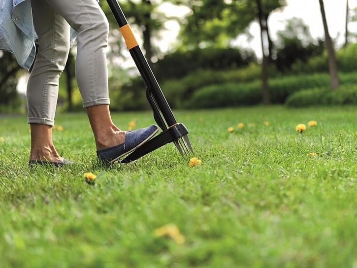 Údržba trávníku a péče o zahradu v létě