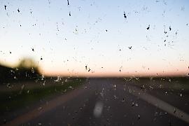 Jak snadno odstranit hmyz ze skel auta