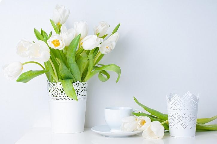 Jarní trendy floristů na veletrhu FOR DECOR 2019