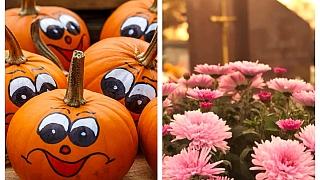 11 tipů, jak se vydovádět na Halloween a zároveň důstojně prožít Dušičky