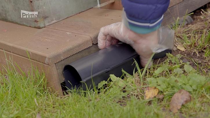 Víte, jak vystrnadit polní škůdce z našich zahrádek? (Zdroj: Jak se bránit proti polním škůdcům)