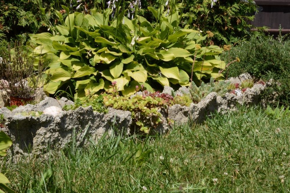 Betonové koryto na květiny