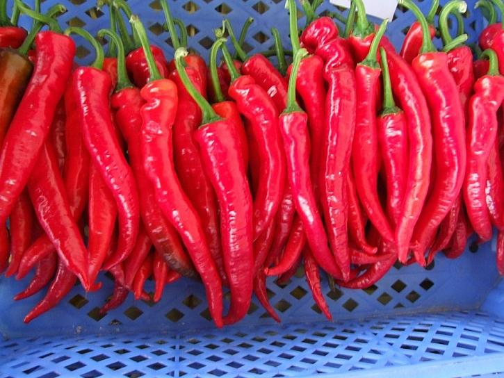 Jalahot jsou velmi pálivé papriky, pěstovaní hlavně v Mexiku