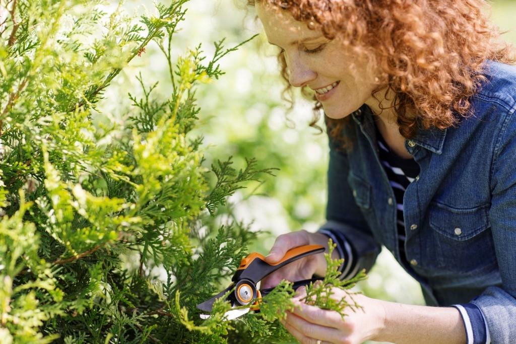 5 vychytávek, bez kterých se letos na zahradě neobejdete!