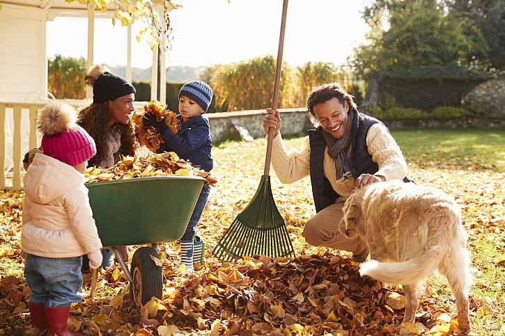 Listí využijte při zazimování zahrady