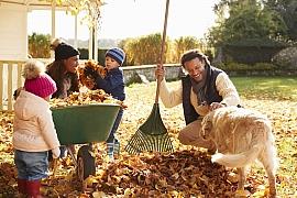 Listí nemusí skončit na kompostu