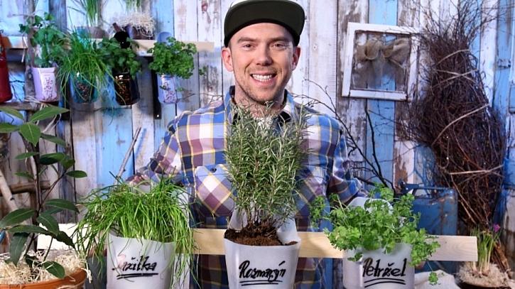 Jak udělat závěsnou bylinkovou zahrádku? Prozradíme v pořadu Vychytávky Ládi Hrušky